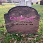 3983_orkut